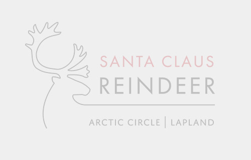 Santa Claus Reindeer in Rovaniemi in Lapland photos